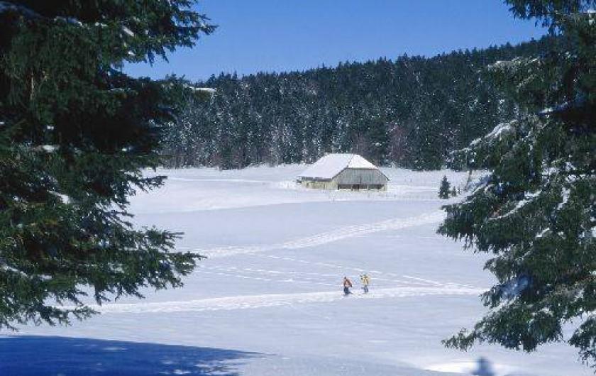 Location de vacances - Gîte à Hotonnes