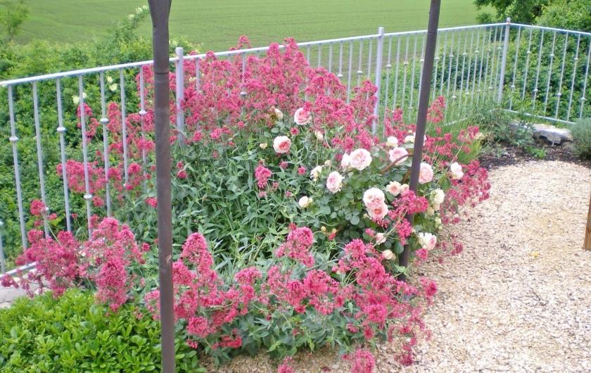 Location de vacances - Gîte à Tharaux - Terrasse  fleurie