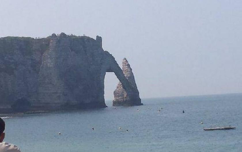 Location de vacances - Gîte à Saint-Sauveur-d'Émalleville - L'aiguille creuse d'Etretat