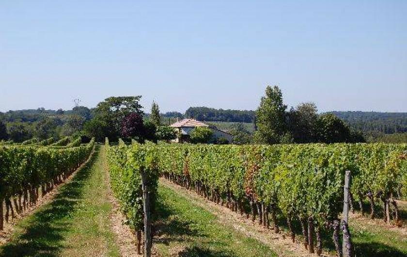 Location de vacances - Maison - Villa à Landerrouet-sur-Ségur
