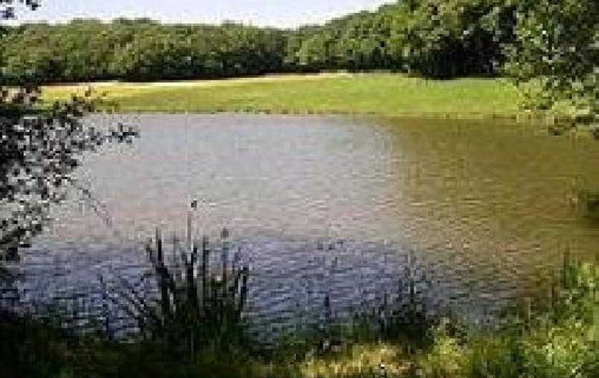 Location de vacances - Maison - Villa à Roumegoux - Etang de pêche