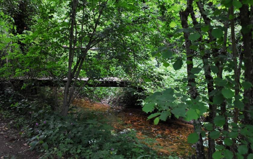 Location de vacances - Chambre d'hôtes à Saint-Laurent-de-Lévézou - Bord de ruisseau