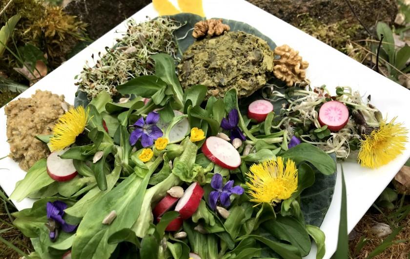 Location de vacances - Chambre d'hôtes à Saint-Laurent-de-Lévézou - Assiette composée terrine aux plantes sauvages