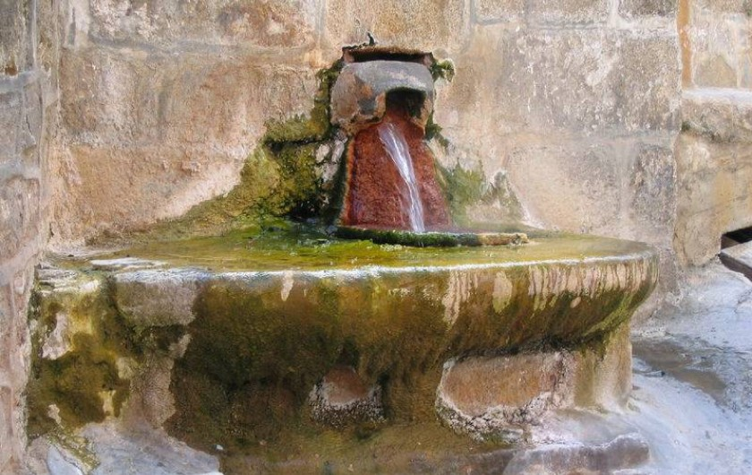 Location de vacances - Gîte à Saint-Flour - Chaudes-Aigues - source du Par