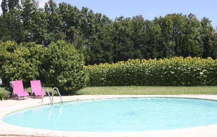 Location de vacances - Mas à Montfavet - piscine été