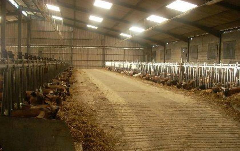 Location de vacances - Chambre d'hôtes à Thury - l'élevage de chèvres