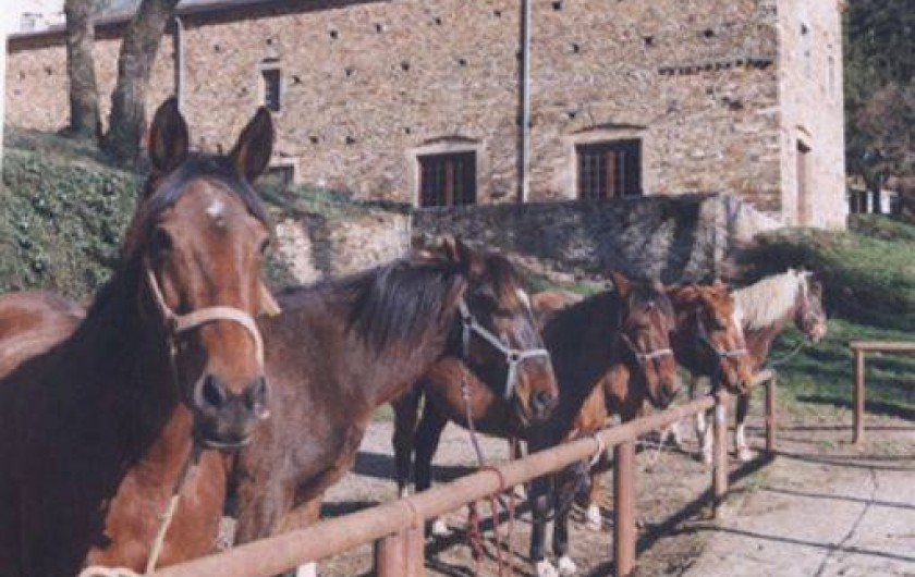 Location de vacances - Gîte à Mont-Roc