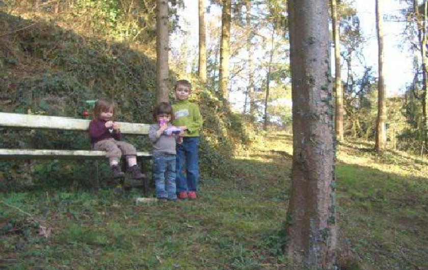 Location de vacances - Gîte à Falaen - Le jardinet