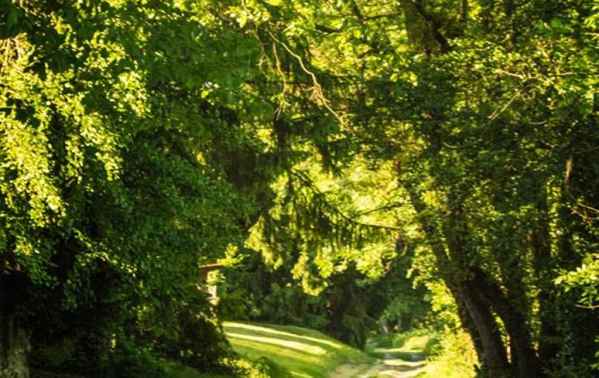 Location de vacances - Gîte à Essômes-sur-Marne