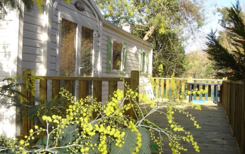 Location de vacances - Camping à Sorède - Mobil-home les Mimosas 40 m² - climatisé - 3 chambres - terrasse 21 m²