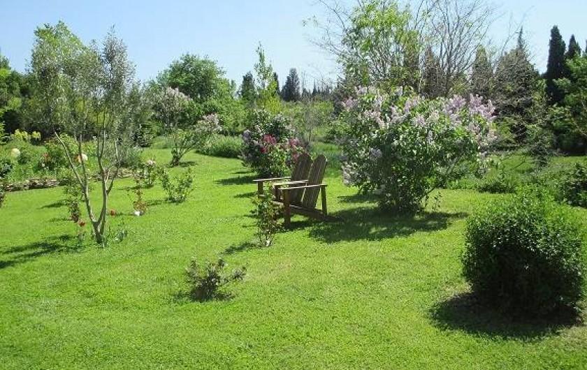 Location de vacances - Gîte à Salon-de-Provence - Le jardin fleuri au printemps