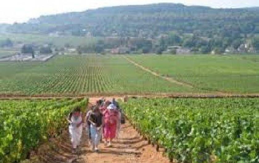 Location de vacances - Gîte à Autun - gite situé entre les vignobles du Beaunois et du Couchois