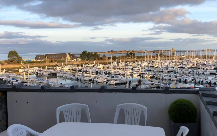 Location de vacances - Studio à Saint-Vaast-la-Hougue - Terrasse