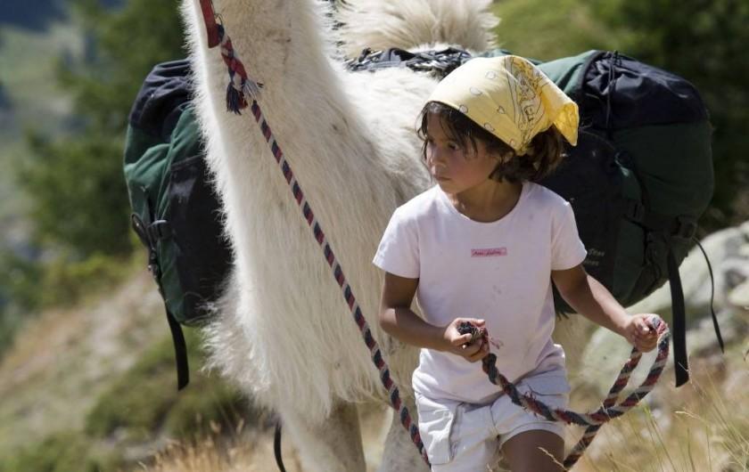 Location de vacances - Hôtel - Auberge à Névache - Randonnées itinérantes à partir de la Joie de Vivre en compagnie de nos lamas  .