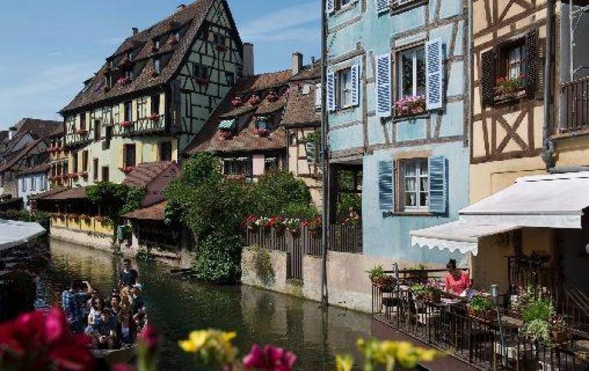 Location de vacances - Appartement à Colmar - La maison bleue côté rivière Lauch