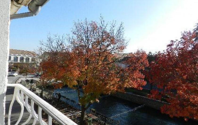 Location de vacances - Appartement à L'Isle-sur-la-Sorgue - La Sorgue sous les fenêtres, en automne