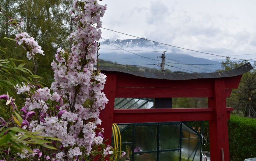 Location de vacances - Villa à Pierre-Châtel - Torii et cerisier du Japon