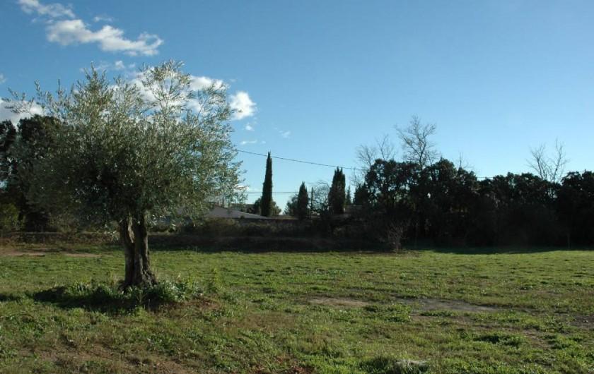 Location de vacances - Villa à Arles - Jardin