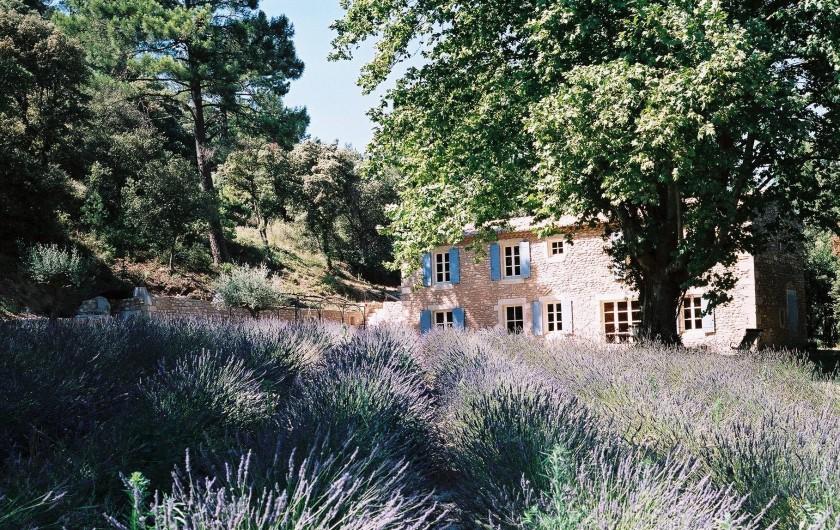 Location de vacances - Mas à Saint-Restitut - La grange du Kaolin