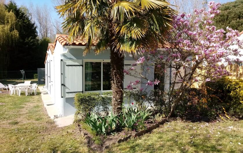 Location de vacances - Gîte à Chaillevette - vu sur le jardinet et la chambre (2)