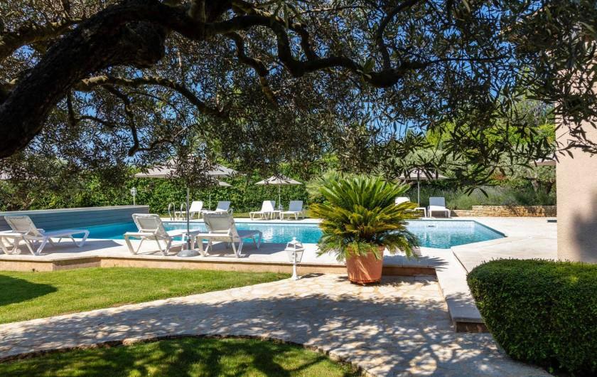 Location de vacances - Gîte à Crillon-le-Brave - Piscine