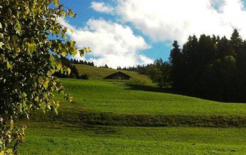 Location de vacances - Chalet à Crest-Voland - Vue depuis la route du chef-lieu été