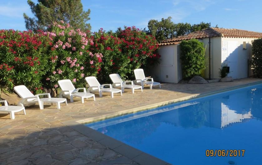 Location de vacances - Villa à San-Gavino-Di-Carbini - La piscine de la résidence