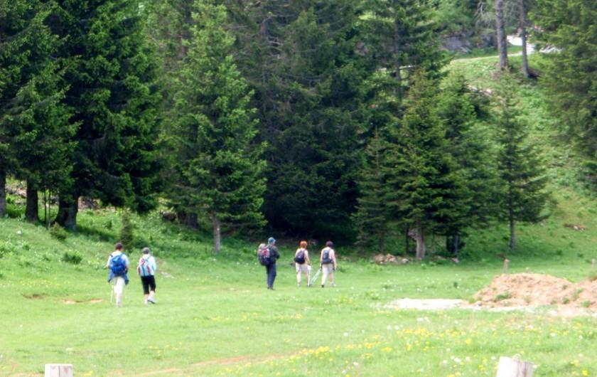 Location de vacances - Gîte à Sancey-le-Grand - randonnées plan à disposition sur place