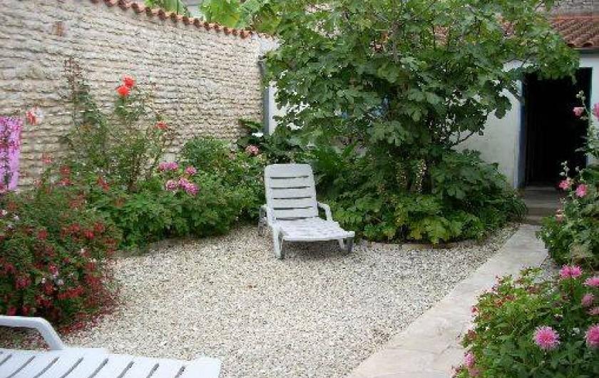 Location de vacances - Maison - Villa à Dolus-d'Oléron - jardin qui est le centre de la maison: rejoint les 2 parties habitées et le chai