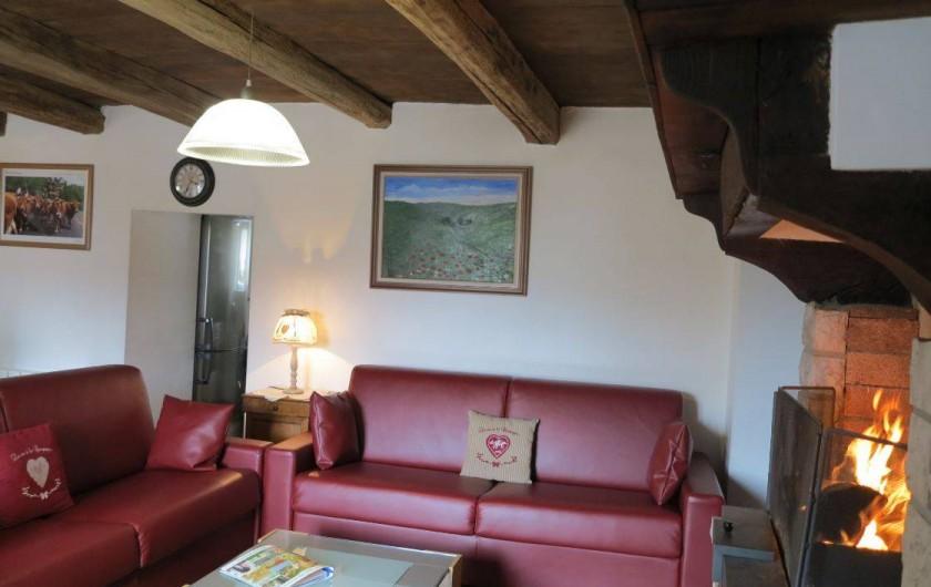 Location de vacances - Gîte à Saint-Pierre-de-Nogaret - Salon avec maxi-canapés (4 places adultes chacun) et cheminée