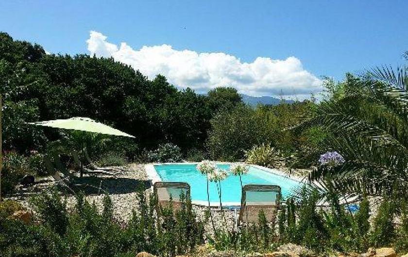 Location de vacances - Maison - Villa à Saint-Florent