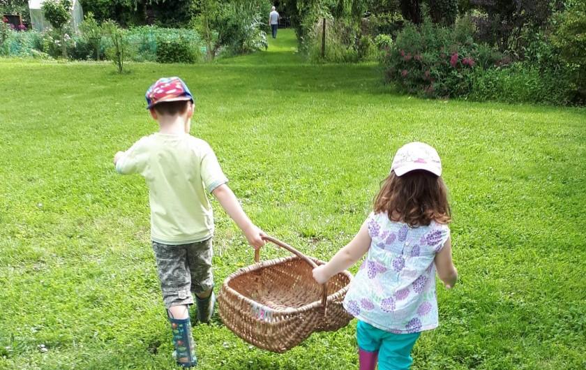 Location de vacances - Chambre d'hôtes à Habas - Direction le potager bio pour ramasser les légumes pour le dîner