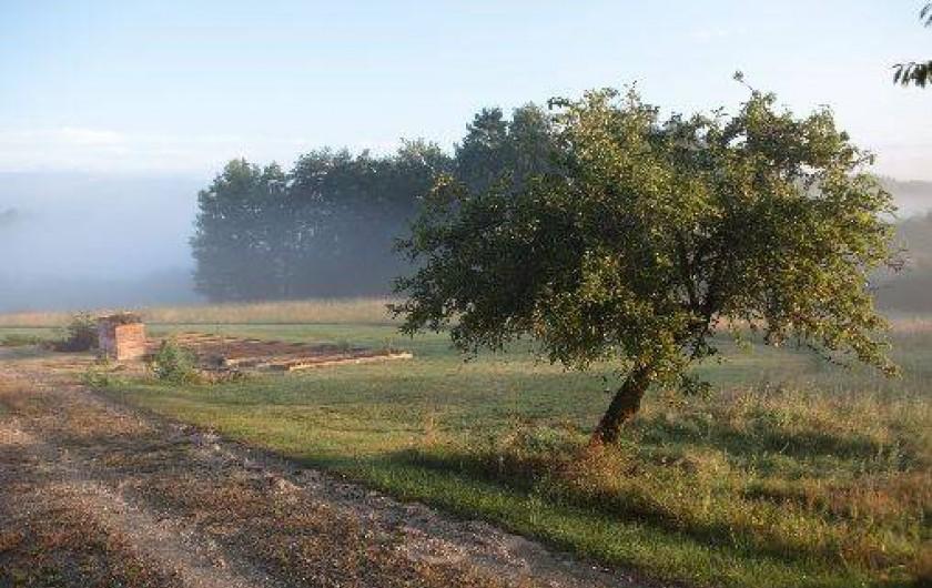 Location de vacances - Gîte à Saint-Amand-de-Coly - le potager et un coin du verger, accessibles aux vacanciers