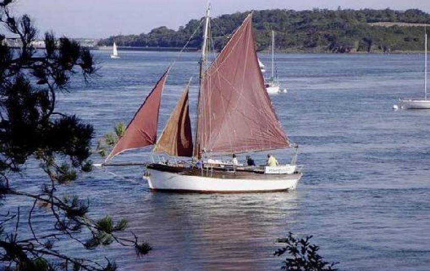Location de vacances - Gîte à Saint-Malo - la rance à 200 metres de votre location