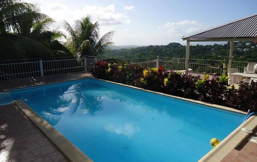 Location de vacances - Gîte à Sainte-Luce - La piscine: 8m sur 4m hydrolyse