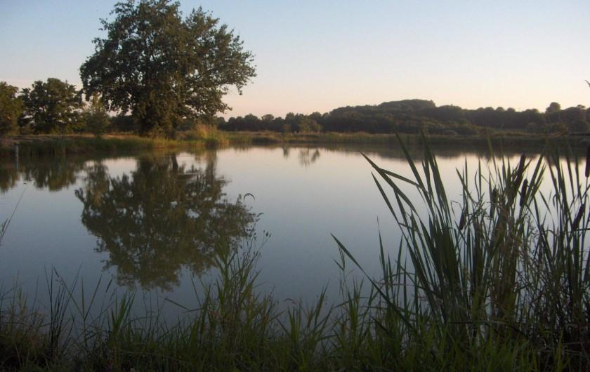 Location de vacances - Gîte à Saint-Bonnet-de-Cray - Etang de la Mirandole