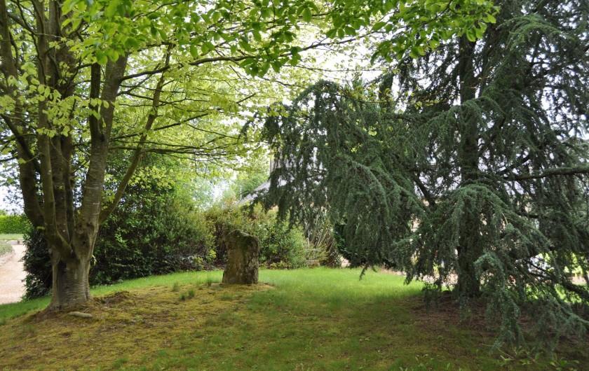 Location de vacances - Gîte à Lanvellec - Sous-bois, dans le jardin, devant Ty Coz
