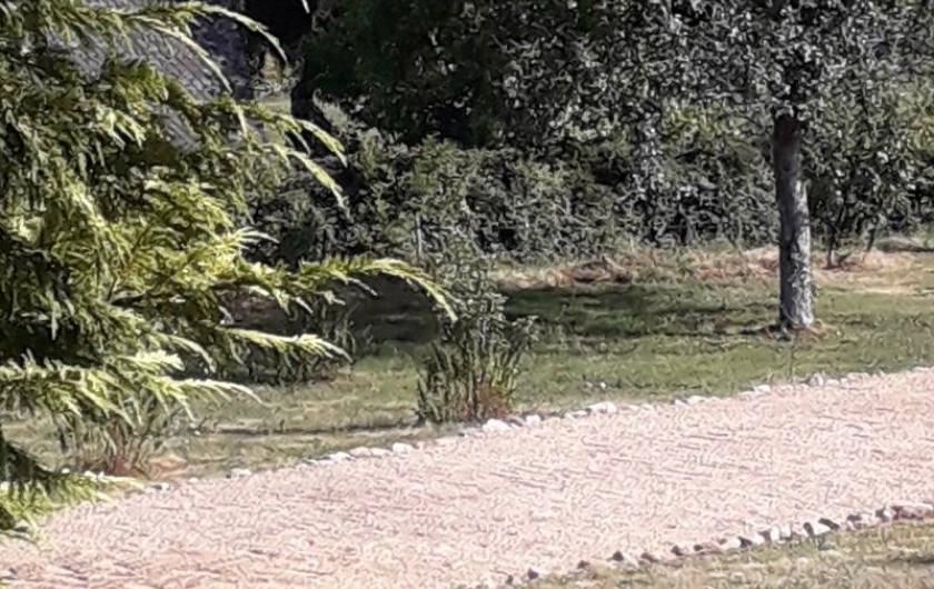 Location de vacances - Gîte à Sansac-Veinazès - BOULODROME