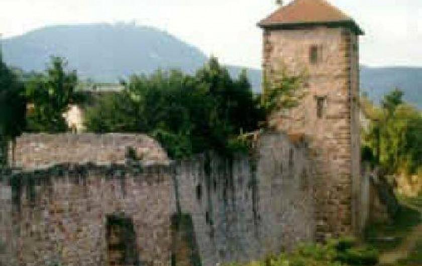 Location de vacances - Gîte à Bergheim - Rempart