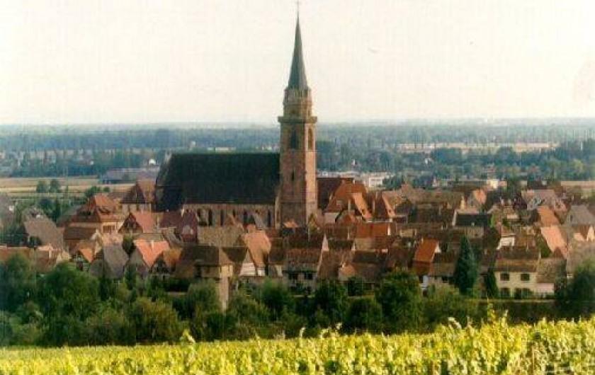 Location de vacances - Gîte à Bergheim
