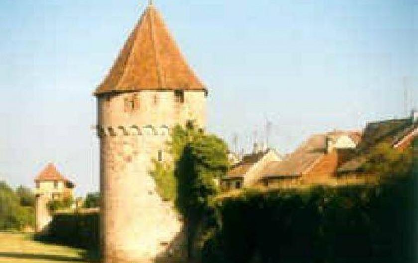 Location de vacances - Gîte à Bergheim - tour des remparts