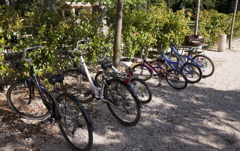 Location de vacances - Mas à Saint-Rémy-de-Provence - velos
