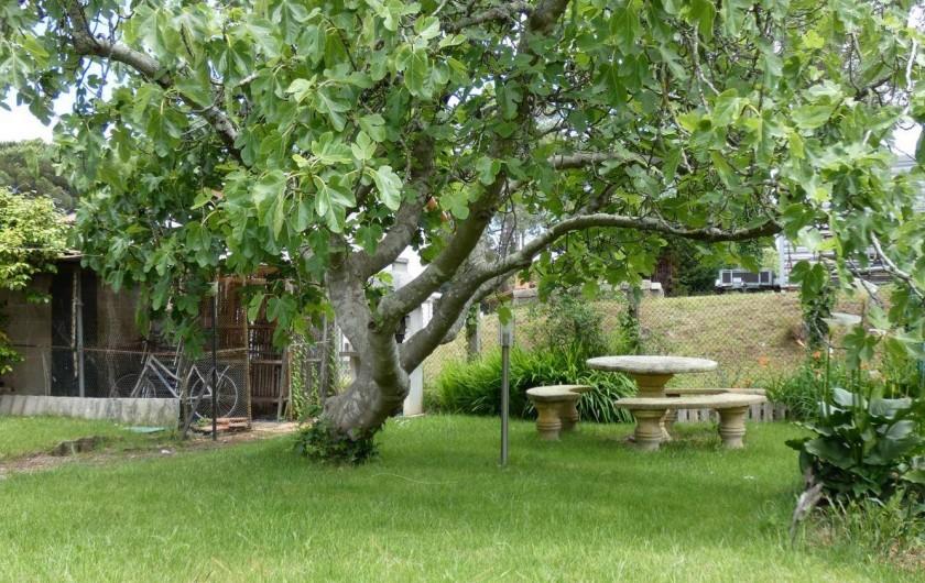 Location de vacances - Appartement à Tarnos - Jardin 3/4