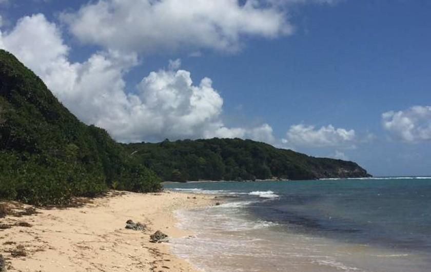 Location de vacances - Villa à Sainte-Anne - Plage de l'anse à saint à 10 mn à pieds