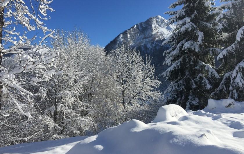 Location de vacances - Chalet à Estaing - RÊVE DE GOSSE jardin d'hiver