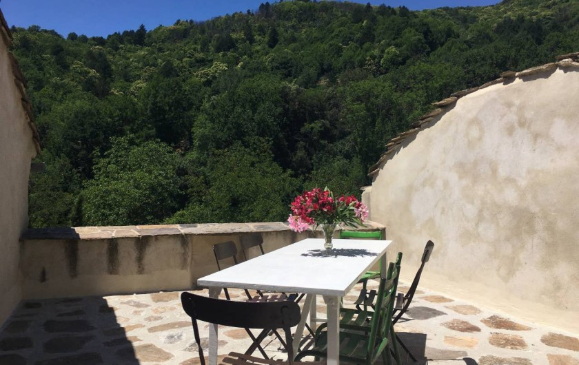 Location de vacances - Gîte à Saint-Vincent-d'Olargues - Terrasse 2 gîte 2