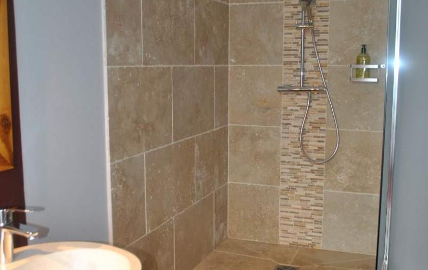 Location de vacances - Chambre d'hôtes à Salies-de-Béarn - la douche à l'italienne Chambre Baldaquin