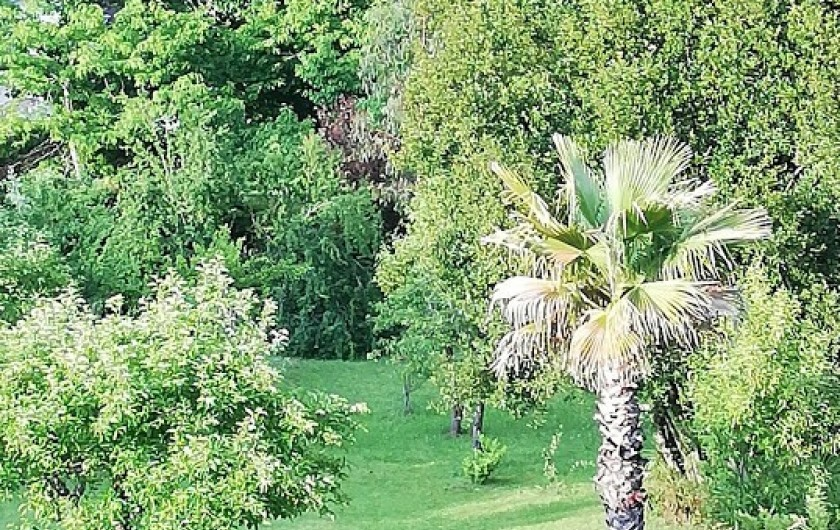 Location de vacances - Chambre d'hôtes à Salies-de-Béarn - vue sur la jardin