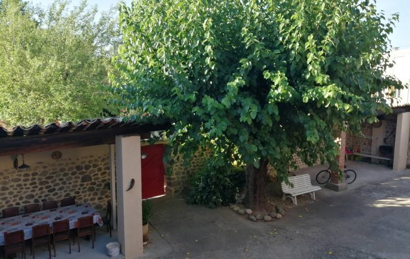 Location de vacances - Gîte à Aubenas - Mûrier dans la cour