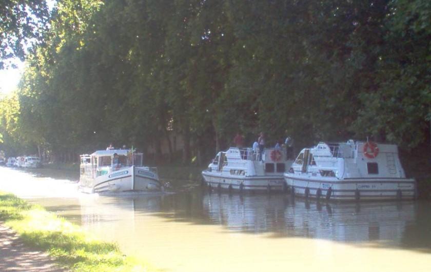 Location de vacances - Camping à Villemoustaussou - Le Canal du Midi